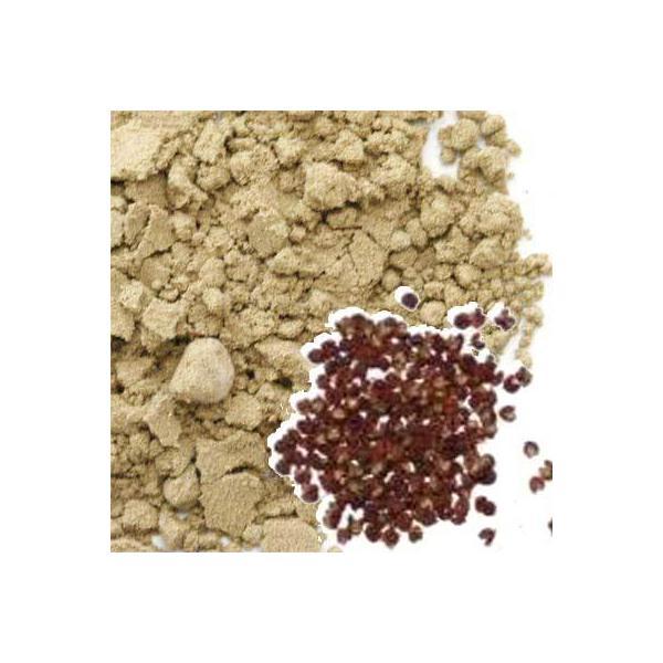 山椒 粉末 業務用1Kg サンショウ パウダー 和歌山県産 乾燥 山椒パウダー 乾燥さんしょうパウダー 粉サンショウ粉末 粉山椒パウダー 粉さんしょう粉末