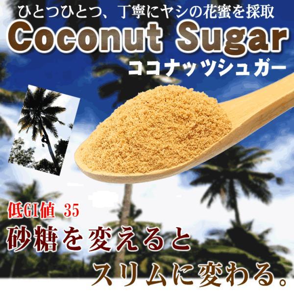 ココナッツシュガー 業務用1Kg 低GI食品ヤシ蜜糖天然糖砂糖の代替品として ゆうメール送料無料|shopyuwn|02