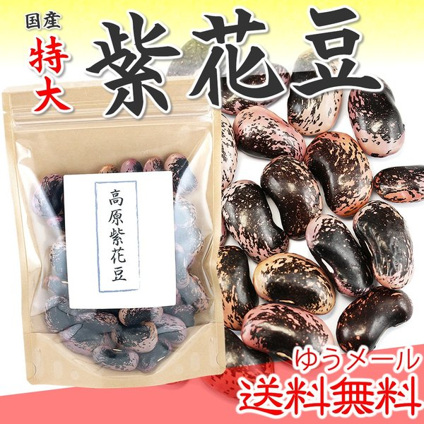 紫花豆特大 200g 高原花豆 大粒  国産 むらさきはなまめ 乾物豆類 乾燥豆 おせち料理などの煮豆 甘煮 甘納豆