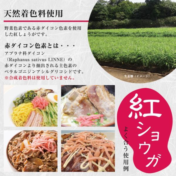 紅ショウガ 660g 1袋 クリックポスト送料無料 紅生姜 紅しょうが ポイント消化 お試し 食品|shougakoubou|05