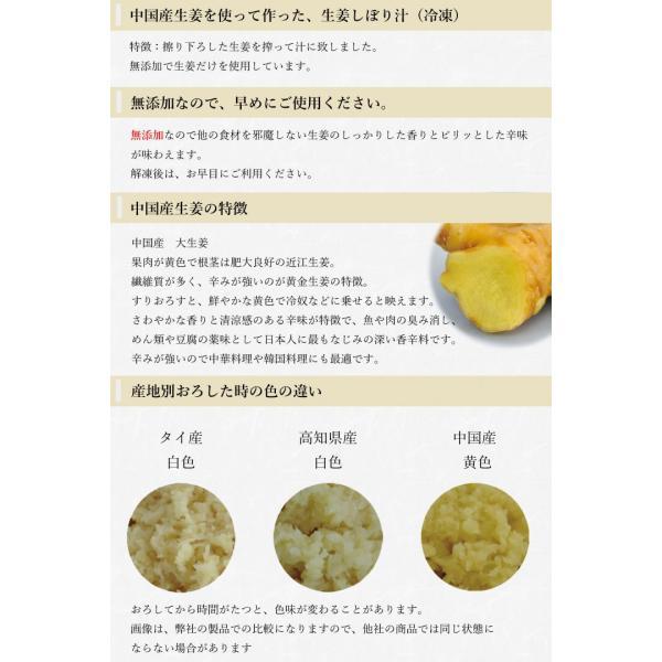 【冷凍】生姜汁 1kg shougakoubou 02