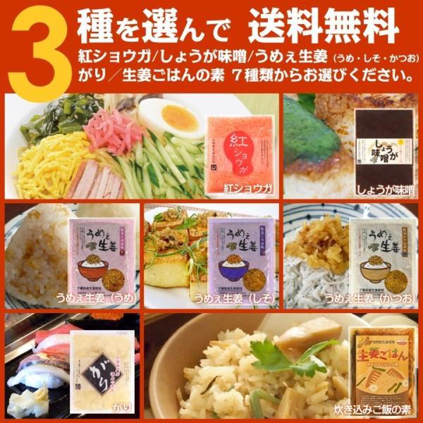 選べるエコパック3パック 「うめぇ生姜」「生姜ごはんの素」「しょうが味噌」「ガリ生姜」「紅ショウガ」「カンポットペッパー」 DM送料無料|shougakoubou