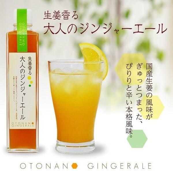 生姜香る大人のジンジャーエール 国産生姜の風味がぎゅっとつまった、ぴりりと辛い本格風味。