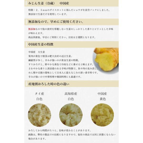 【冷蔵】みじん切り生姜 1kg 中国産|shougakoubou|02