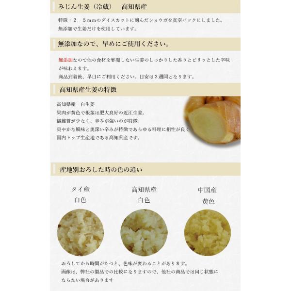 【冷蔵】みじん切り生姜 1kg 高知県産|shougakoubou|02