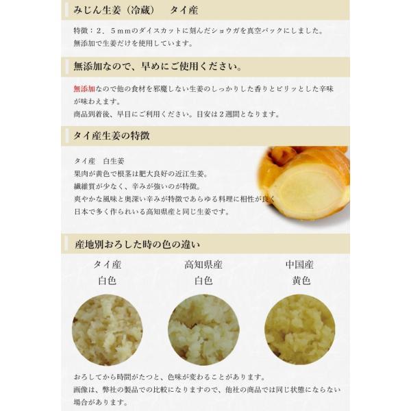 【冷蔵】みじん切り生姜 1kg タイ産 shougakoubou 02
