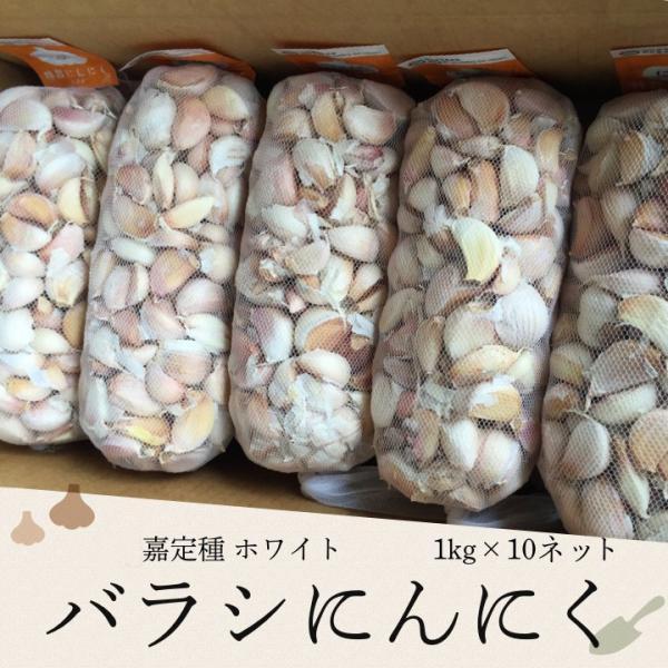 バラシにんにく 1kg×10ネット 中国産 上海嘉定種(ホワイト) shougakoubou