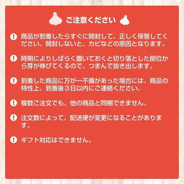 バラシにんにく 1kg×10ネット 中国産 上海嘉定種(ホワイト) shougakoubou 10