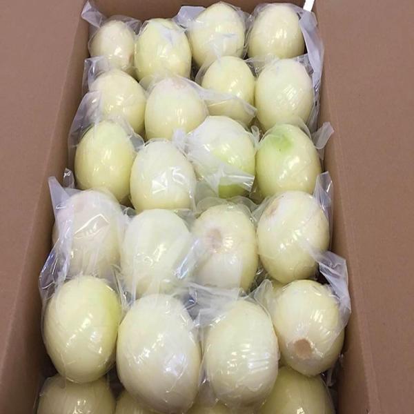 冷蔵 ムキ玉葱(2L)真空パック 10kg 中国産