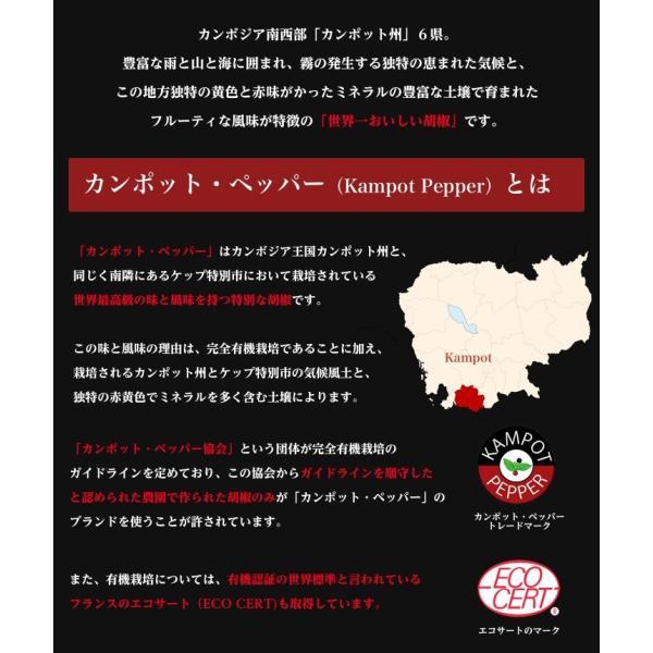 カンポット・ペッパー 生胡椒 30g + 黒胡椒 20g クリックポスト送料無料|shougakoubou|03