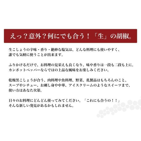 カンポット・ペッパー 生胡椒 30g + 黒胡椒 20g クリックポスト送料無料|shougakoubou|05