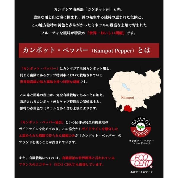 カンポット・ペッパー 白胡椒 20g 1袋 クリックポスト 送料無料|shougakoubou|03