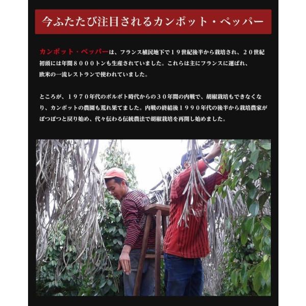 カンポット・ペッパー 白胡椒 20g 1袋 クリックポスト 送料無料|shougakoubou|05