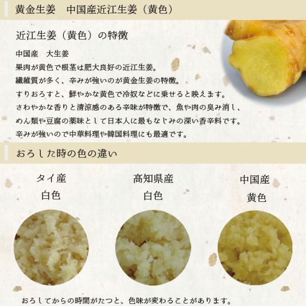 【青果】食用 中国産 黄金生姜 近江生姜 黄 1kg shougakoubou 02