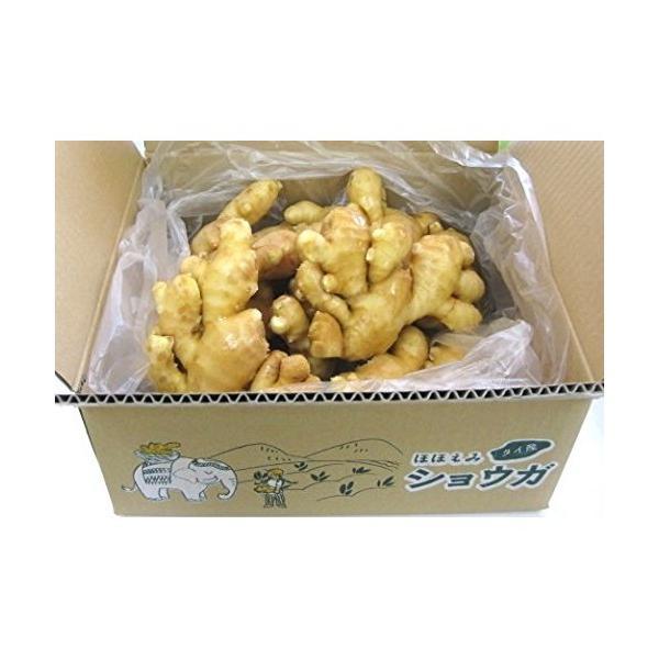 食用 タイ産ほほえみショウガ 3kg(近江生姜 白)
