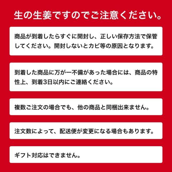 【種生姜】千葉県産 金時生姜 10kg|shougakoubou|03