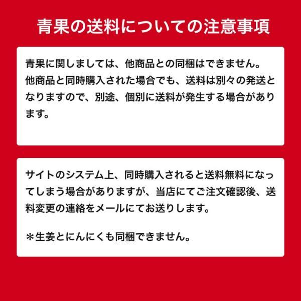 【種生姜】千葉県産 金時生姜 10kg|shougakoubou|04