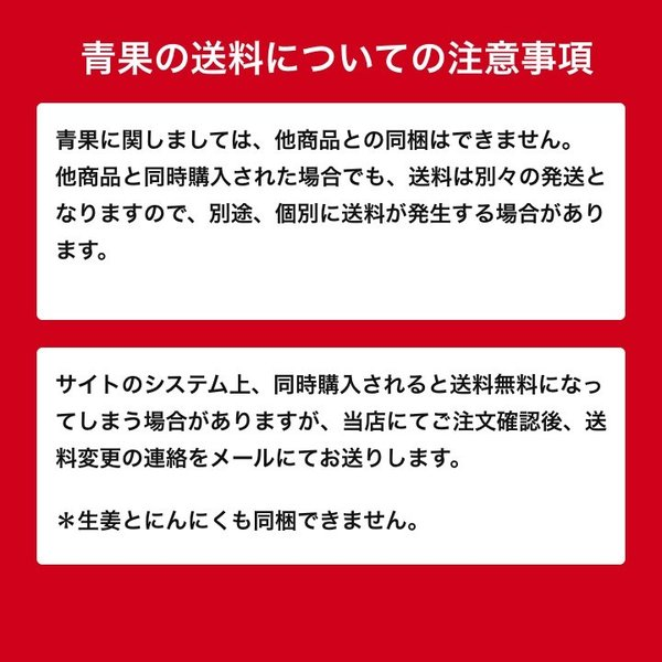 【種生姜】中国産 小生姜 10kg|shougakoubou|08