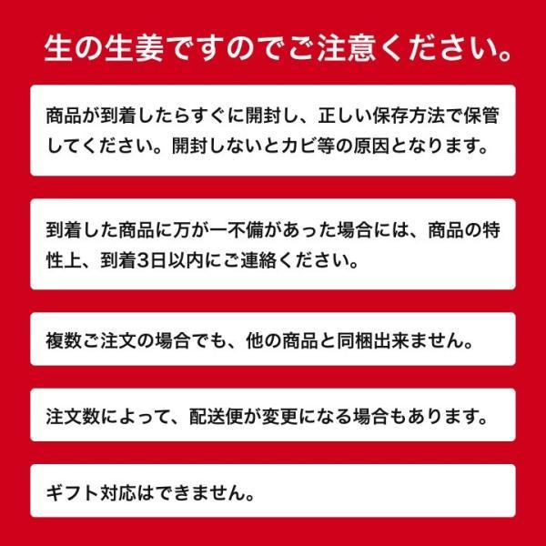 タイ産 近江生姜(白)10kg ※種生姜としてもお使いいただけます[生姜種 たね生姜 生姜の種 生姜栽培]|shougakoubou|06