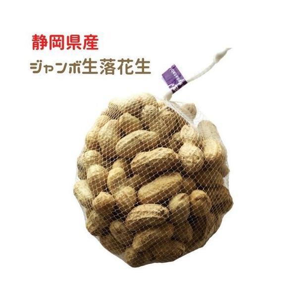 令和3年度 殻付き 生落花生 特大 ジャンボサイズ 静岡県富士宮市特産 なま落花生 約1kgネット