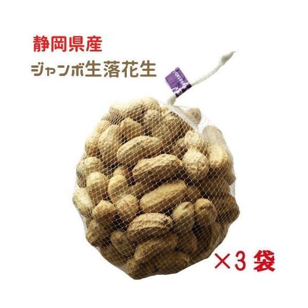 令和3年度 殻付き 生落花生 特大 ジャンボサイズ 静岡県富士宮市特産 なま落花生 約1kgネット×3
