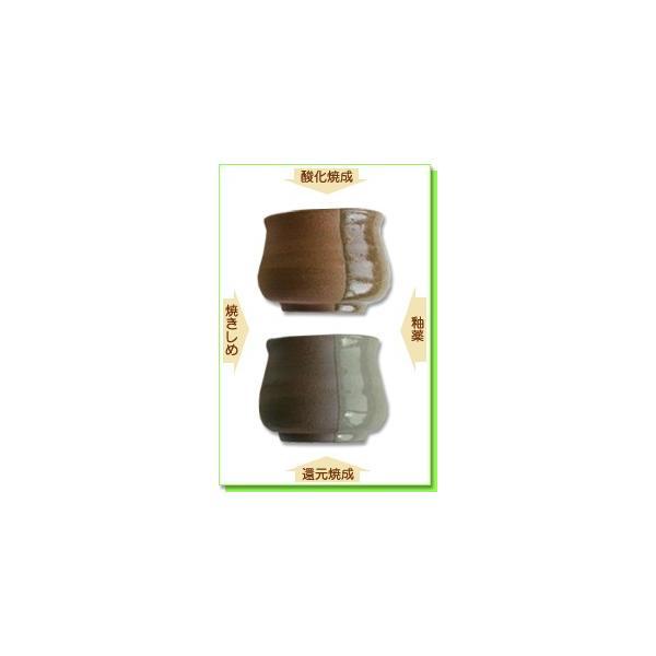 陶芸 粘土 テラコッタ粘土 細目 20kg|shugale1