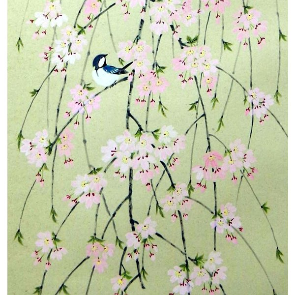 掛軸「枝垂桜」 大野紅節|shukeido-net|02
