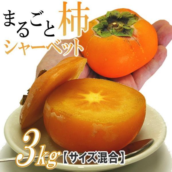 柿 シャーベット 山形産 まるごと柿シャーベット 3kg アイス フルーツ