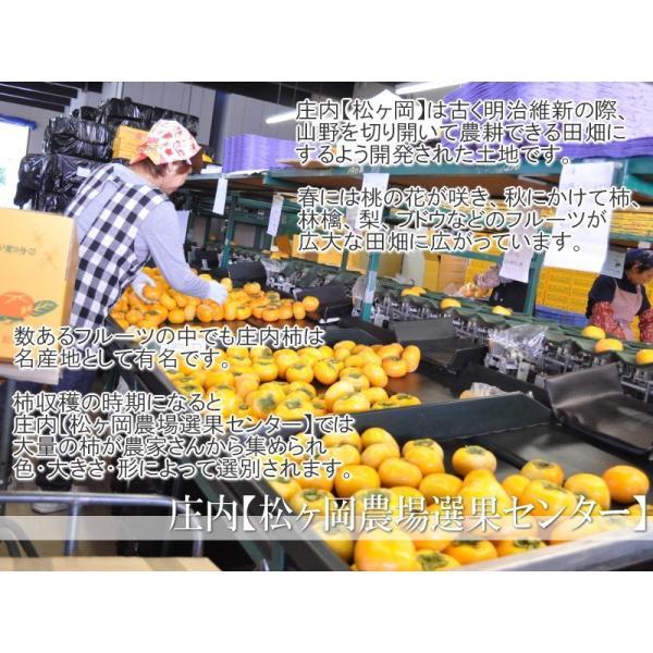 山形県産 庄内柿 2kg 10-20玉前後 2個購入で1kg増量! バラ詰め 訳あり|siasunet|04