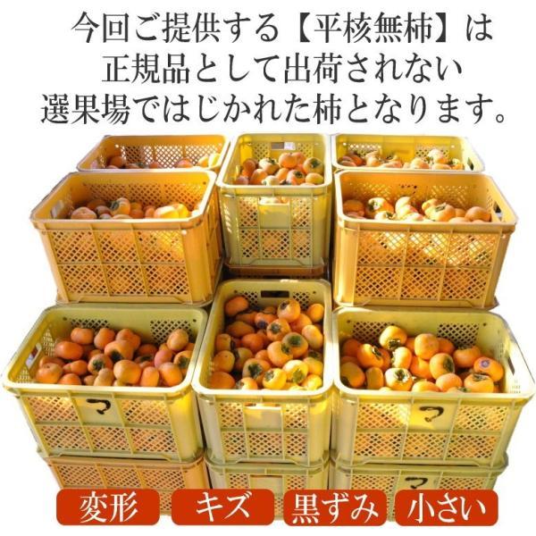 山形県産 庄内柿 2kg 10-20玉前後 2個購入で1kg増量! バラ詰め 訳あり|siasunet|05