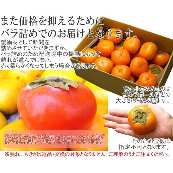 山形県産 庄内柿 2kg 10-20玉前後 2個購入で1kg増量! バラ詰め 訳あり|siasunet|06