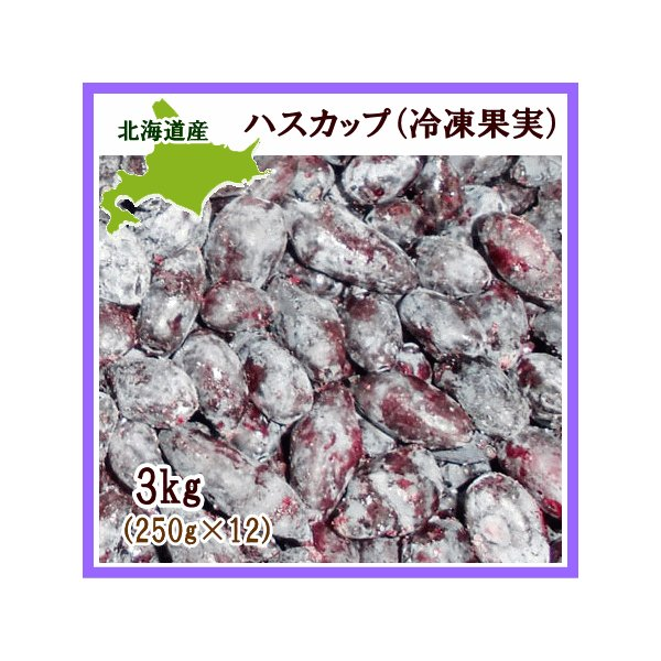 ハスカップ(冷凍果実)3Kg(250g×12) 北海道産