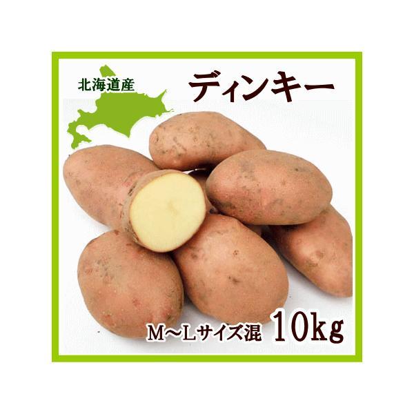 ディンキー (M〜Lサイズ混)10Kg 北海道産 じゃがいも 出荷時期 10〜4月 生産元直送