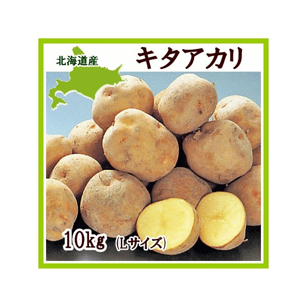 キタアカリ(L)10Kg 北海道産じゃがいも きたあかり 出荷時期:9〜4月