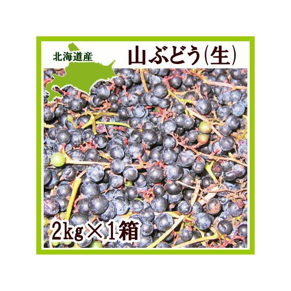 ヤマブドウ 2Kg×1箱 北海道産 山ぶどう 出荷時期:9〜10月