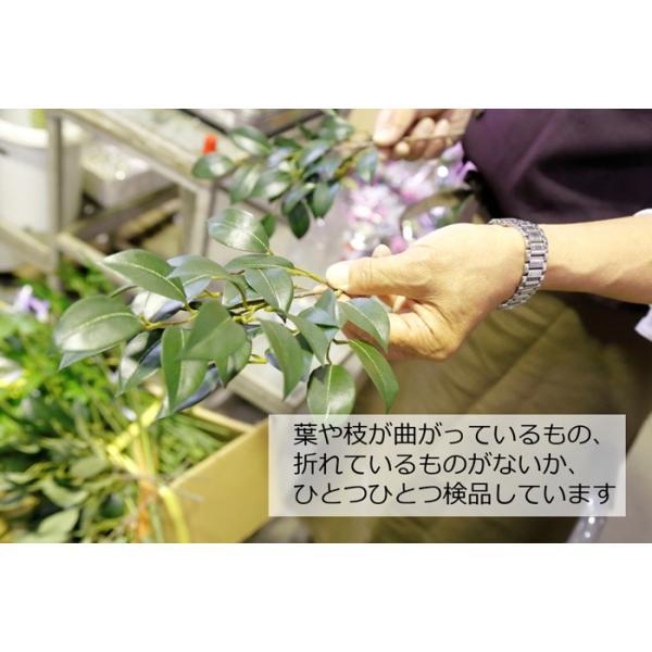 榊 造花 お榊 オサカキ 小 一対 神棚 ミニ CT触媒|silkflower|05