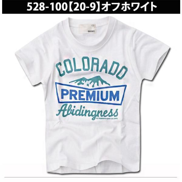 SHISKY アメカジ・プリントTシャツ キッズ ジュニア カレッジデザイン 半袖 ティーシャツ 男の子 110 120 130 140 150 160 2点以上で送料無料|sime-fabric|17