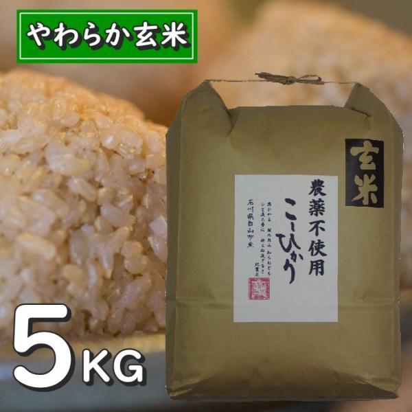 お米玄米5kgコシヒカリ玄米食用令和2年産石川県特別栽培栽培 中農薬不使用やわらか玄米