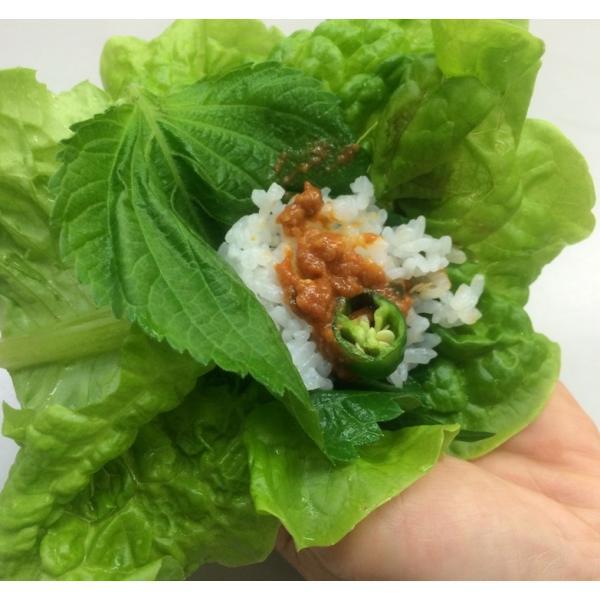サニーレタス サンチュ 1ケース(200枚)サンギョップサル バーベキュー 韓国野菜 焼肉