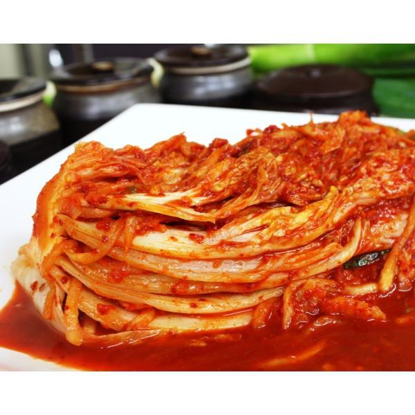 手作りキムチ専門店 フルーツキムチ 白菜キムチ かぶ・ポギ5kg(500g×10個) 辛口(激辛口)