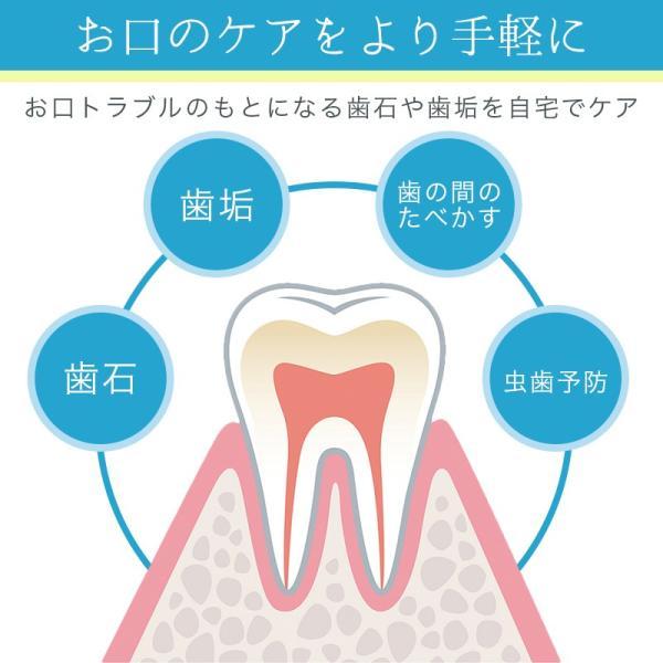 歯石取り 自分で取る 除去 器具 歯垢 とり 2本セット 犬 猫 ペットにも 自宅で|sinc|05