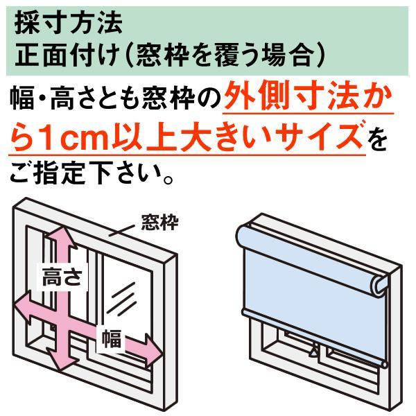 ロールスクリーン TASTE シースルー(レースカーテンのような透け感) 横幅25〜40cm × 高さ91〜180cm  オーダー メイド 立川機工製|skipskip|06