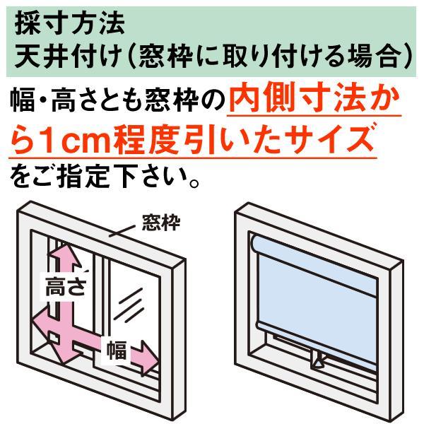 ロールスクリーン TASTE シースルー(レースカーテンのような透け感) 横幅41〜60cm × 高さ181〜200cm  オーダー メイド 立川機工製|skipskip|05