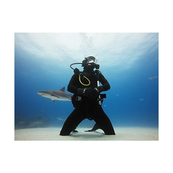 【国内正規品】 GoPro ウェアラブルカメラ用アクセサリ 青のウォーターダイブフィルタ Super Suit用 AAHDR-001
