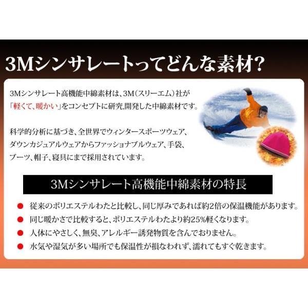 掛け布団 シンサレート インシュレーション シングルサイズ 150×210cm 防ダニ 洗える thinsulate Insulation 暖かさ 羽毛の約2倍 掛布団 S 《1.TS4》|sleep-plus|02