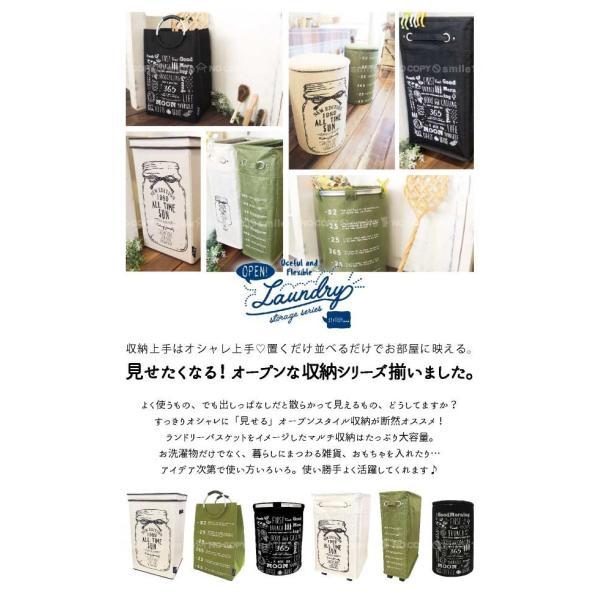 オープンランドリーBOX   「送料無料」 smile-hg 02