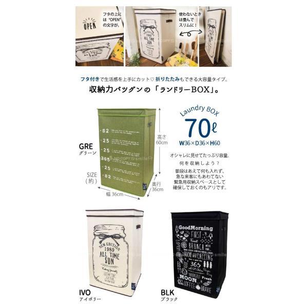 オープンランドリーBOX   「送料無料」 smile-hg 03