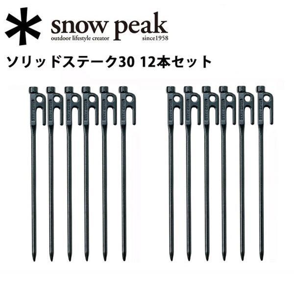 スノーピーク (snow peak) 【12本セット】6本セット2個  ペグ テント・タープ小物/ソリッドステーク30/R-103 【SP-TACC】