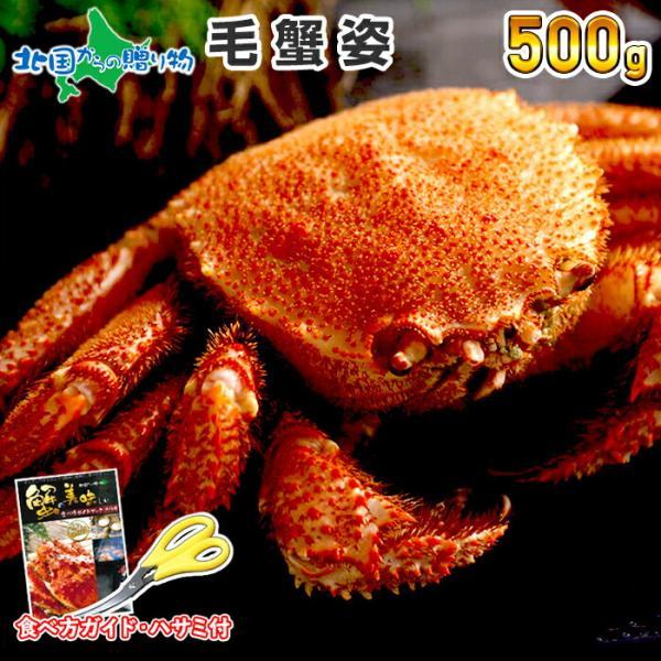 ギフト 北海道 毛蟹 姿 500g カニ 敬老の日 かに 海鮮 蟹 ボイル 毛ガニ 食べ物 2021年 内祝い お返し プレゼント