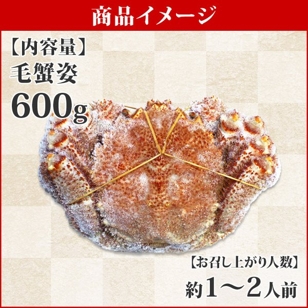 カニ かに 蟹 毛蟹 姿 600g 北海道産 海鮮 ギフト 加藤水産|snowland|02